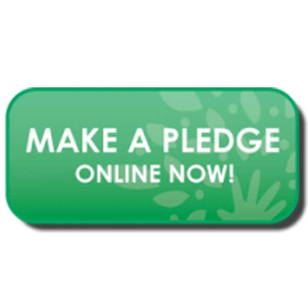 Make a Pledge Online
